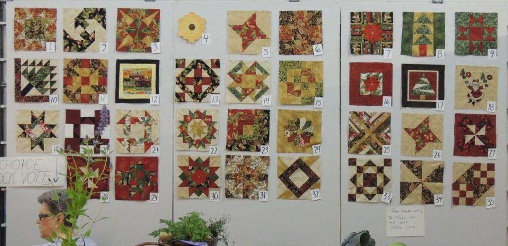 Fair Peoples Choice quilt blocks