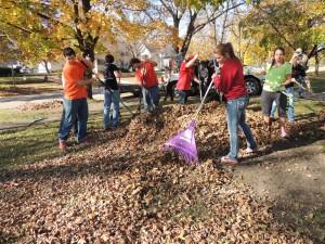 Leaf raking 2015